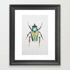 Beetle Watercolor II Framed Art Print