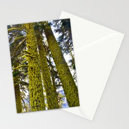 Lichen Madness - Crater Lake National Park Stationery Cards