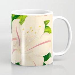 Azalea Alba Magnifica (Rhododendron indica) Vintage Botanical Floral Scientific Illustration Coffee Mug
