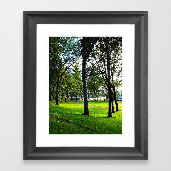 Neighborhood Park Framed Art Print