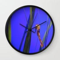 sea horse Wall Clocks featuring Sea Horse by Digipix604