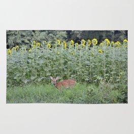 baby deer Rug