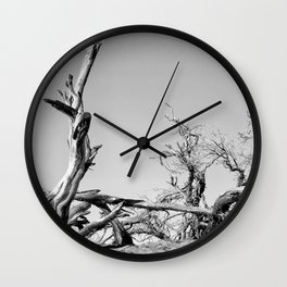 Death Valley Tree Wall Clock