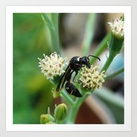 insect Art Prints featuring Insect by Angelandspot