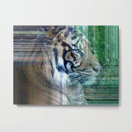 Hidden Tiger Metal Print
