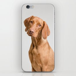 Dog Portrait iPhone Skin