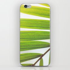 Jungle Abstract iPhone & iPod Skin
