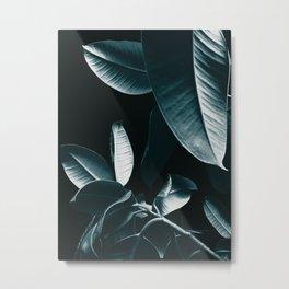 Ficus Elastica DARK NIGHT #1 #foliage #decor #art #society6 Metal Print