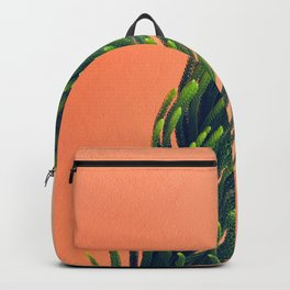Complementary Colors Green Salmon Pink Against Background Backpack