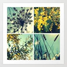 Wander Through Spring II Art Print
