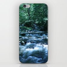 A Fork in the River (color) portrait iPhone & iPod Skin