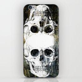 Skull Graffiti 1.0 iPhone Skin