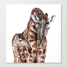 Giraffe with Baby Giraffe Canvas Print