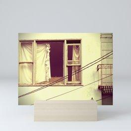 window treatments Mini Art Print