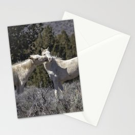 Wild Horses with Playful Spirits No 2 Stationery Cards
