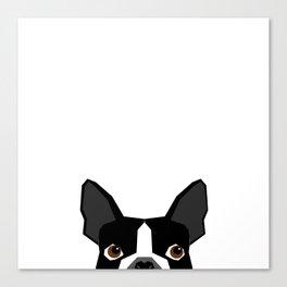 Boston Terrier head peeking cute dog gifts funny must haves boston terriers Canvas Print
