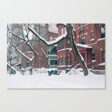 Trees & Snow Canvas Print