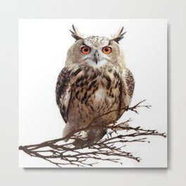 WILDERNESS BROWN OWL IN WHITE Metal Print