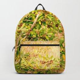 Late Freshness of a sleepy nature Backpack