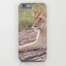 Lioness Slim Case iPhone 6s