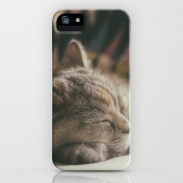 Sweet lullaby. Cat nap. iPhone Case