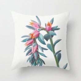 Succulent Cluster Throw Pillow