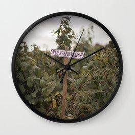 Red Rasberries Wall Clock