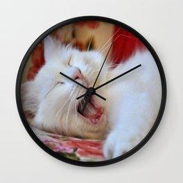 Cute Portrait Of A Yawning Van Cat Wall Clock