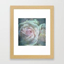 Vintage Rose - Vintage English Rose Framed Art Print