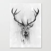 animals Canvas Prints featuring Red Deer by Alexis Marcou