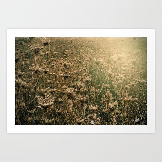 A different kind of nature's beauty Art Print