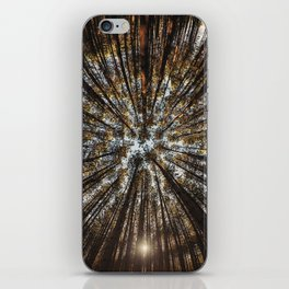 Pines Above iPhone Skin