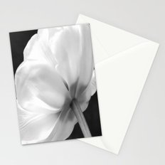 Close-up of white tulip in black background Stationery Cards