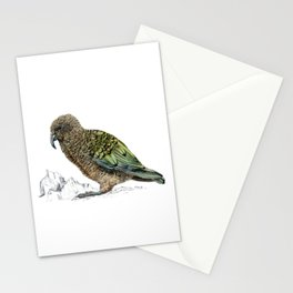 Mr Kea, New Zealand parrot Stationery Cards