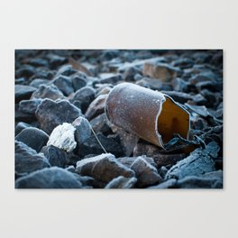 A Cold One Canvas Print
