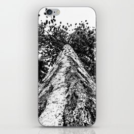 Squirrel View // Climbing Tall Tree Trunks // Winter Landscape Snowy Decor Photography iPhone Skin