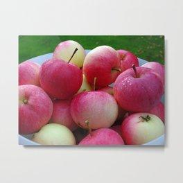 Finnish Apples Metal Print