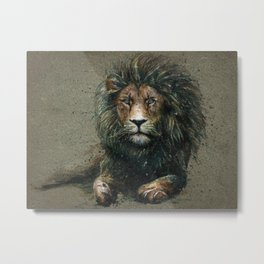 Lion background Metal Print