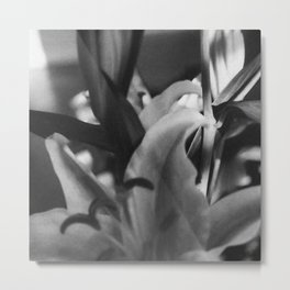 Stargazer Lily In Bloom Metal Print