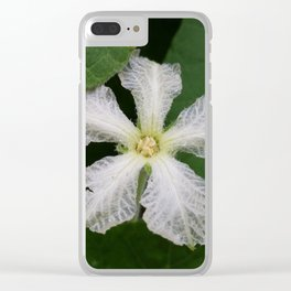 gourd blossom Clear iPhone Case