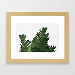 Minimal Banana Leaves Framed Art Print