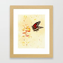 Swallowtail Coming In For A Landing Framed Art Print