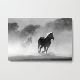 Horses Galloping In Bush Black And White Metal Print