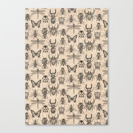 Bugs and insects Canvas Print