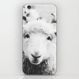 SHEEP III / Ireland iPhone Skin