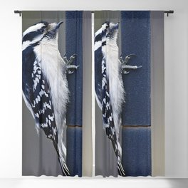 Feathered Friend Blackout Curtain