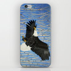 Bald Eagle-3 iPhone & iPod Skin
