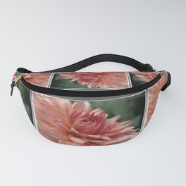 Dahlia named Preference Fanny Pack