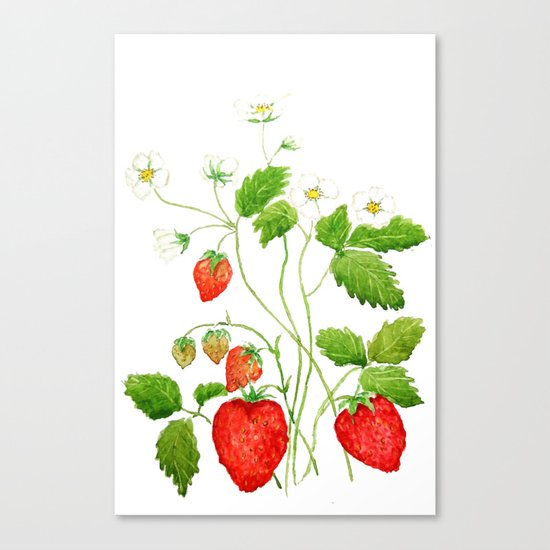 strawberry and strawberry flowers watercolor painting Canvas Print