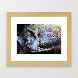 Ozark Framed Art Print